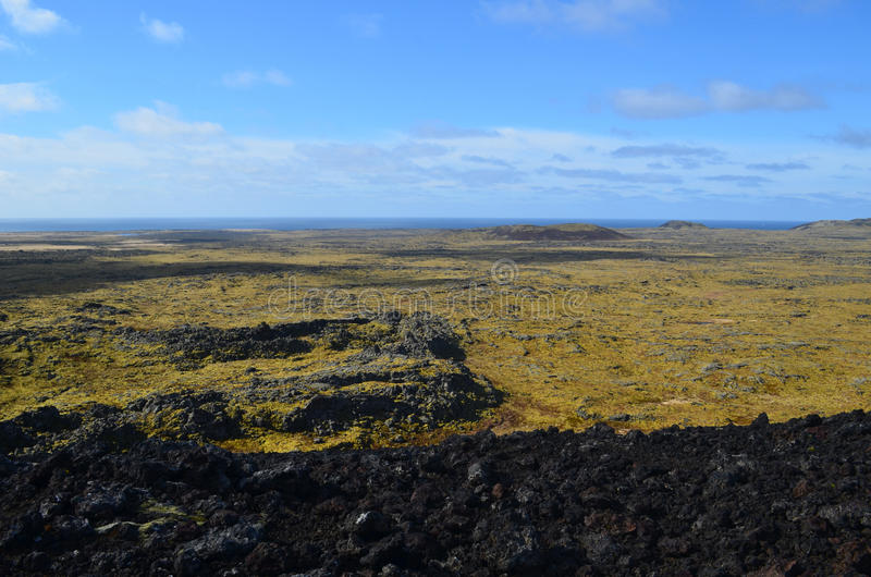 Miles of Lava Rock Covered in Moss in Iceland royalty free stock image