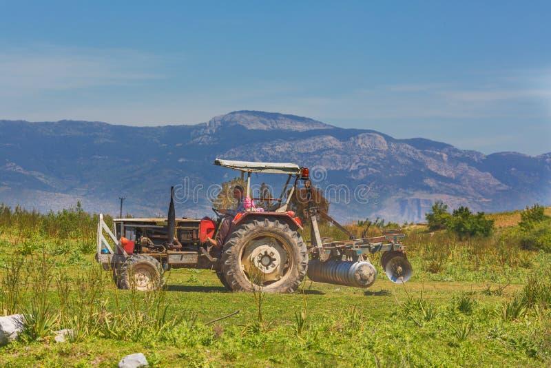 MILETO, TURCHIA - 3 MAGGIO 2015: Trattore che lavora alla terra dell'azienda agricola alle rovine di Mileto antico fotografia stock libera da diritti