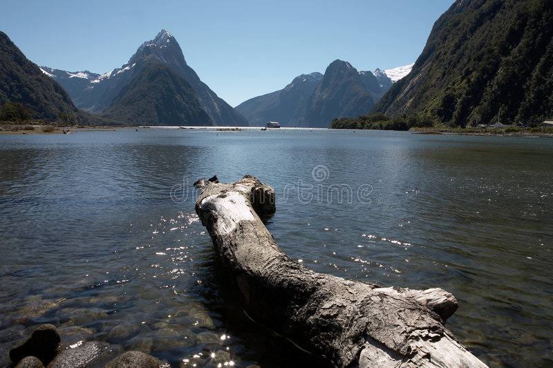 Download Milford Sound stock photo. Image of fjord, south, mirrored - 1689900