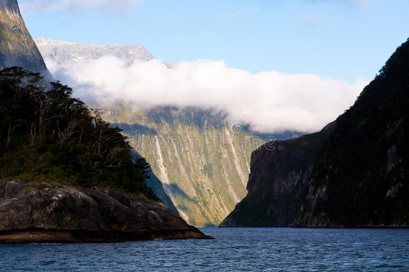 Download Milford Sound stock image. Image of sound, fiordland - 19731229