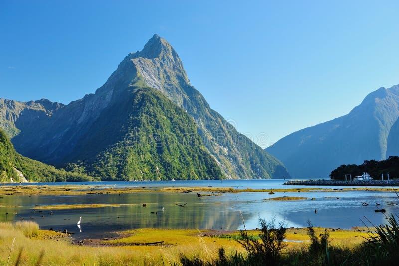 Milford Sound en Nueva Zelanda foto de archivo libre de regalías