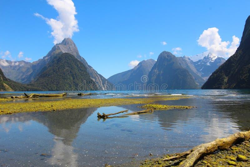 Milford Sound, fiordland Nationalpark, Neuseeland stockfotos