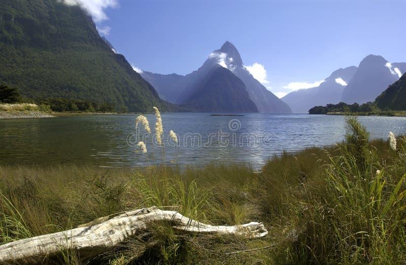 Milford Sound - Nova Zelândia fotografia de stock