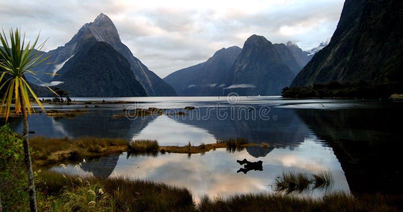 Milford Sound Nova Zelândia imagens de stock