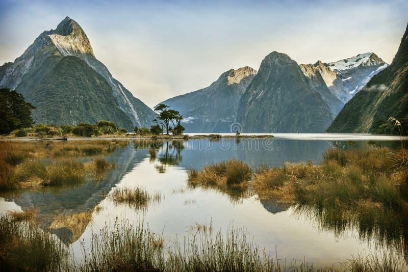 Milford Sound Nuova Zelanda fotografie stock libere da diritti