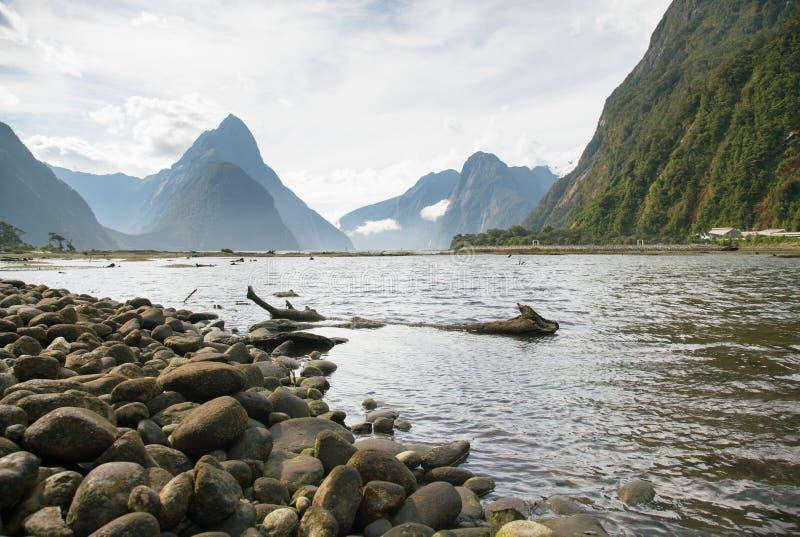 Milford Sound nyazeeländsk södra ö royaltyfri fotografi