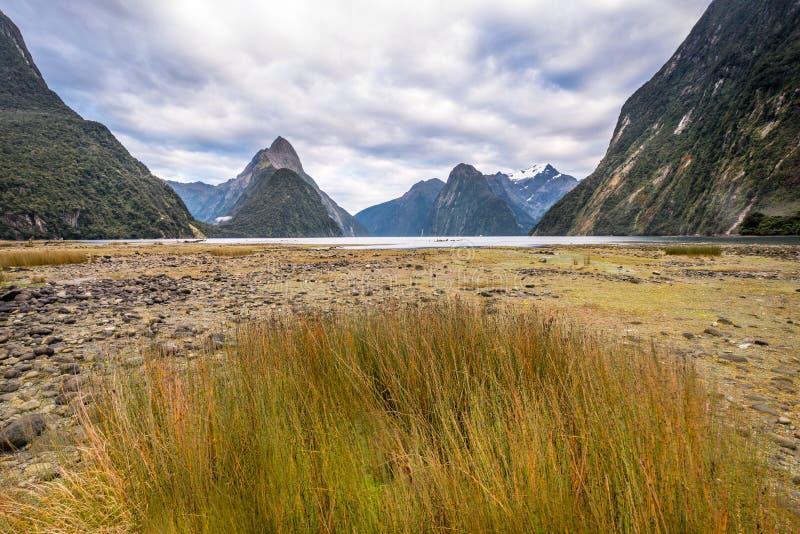 Milford Sound Piopiotahi är en berömd dragning i den Fiordland nationalparken, den södra ön av Nya Zeeland fotografering för bildbyråer