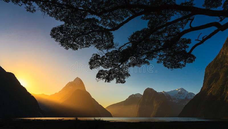 Milford sound. Sunset on a clear day at the tourist spot of Milford sound, New Zealand royalty free stock photos