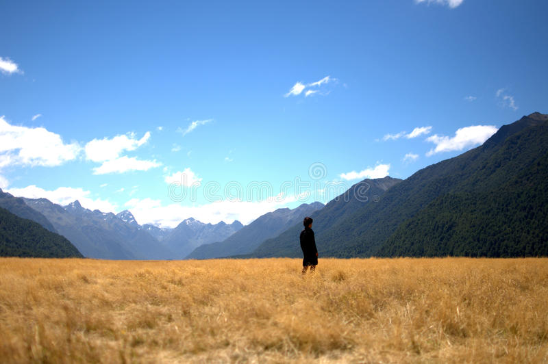 Milford Sound. Valley near the road to Milford Sound (South Island New-Zealand royalty free stock photo
