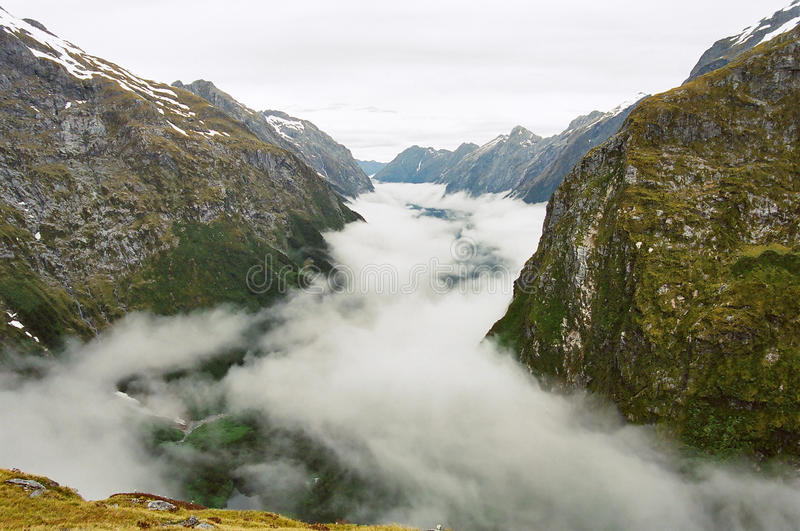 Milford track fog valley, New Zealand stock images
