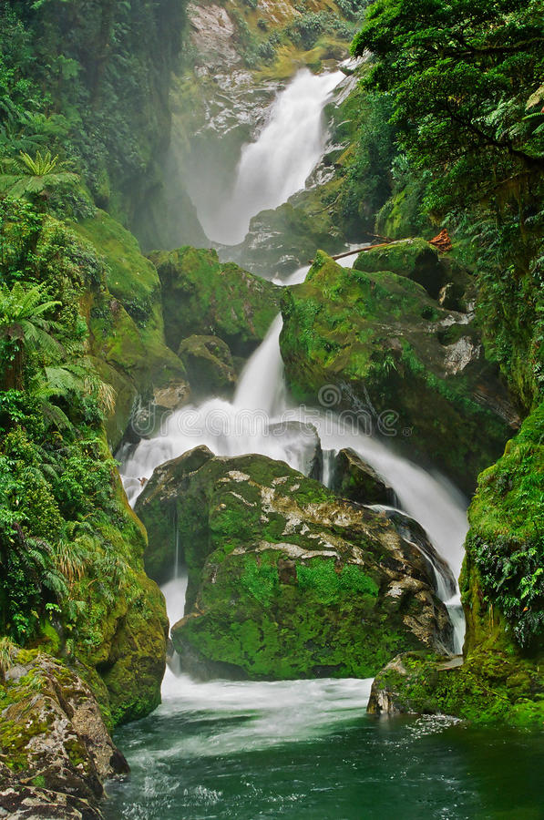 Download Milford Track Mackay Waterfall, New Zealand Stock Image - Image: 13901903