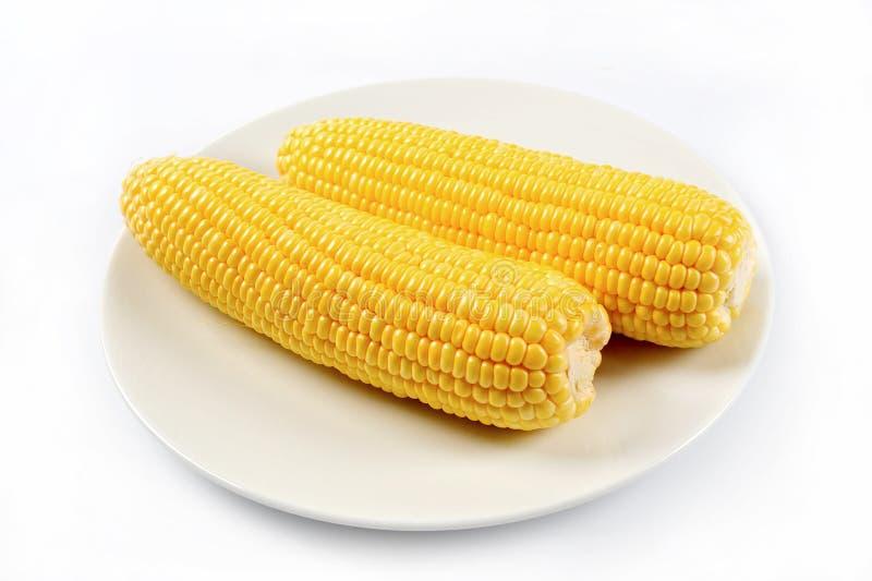 Milho amarelo fervido saboroso imagem de stock