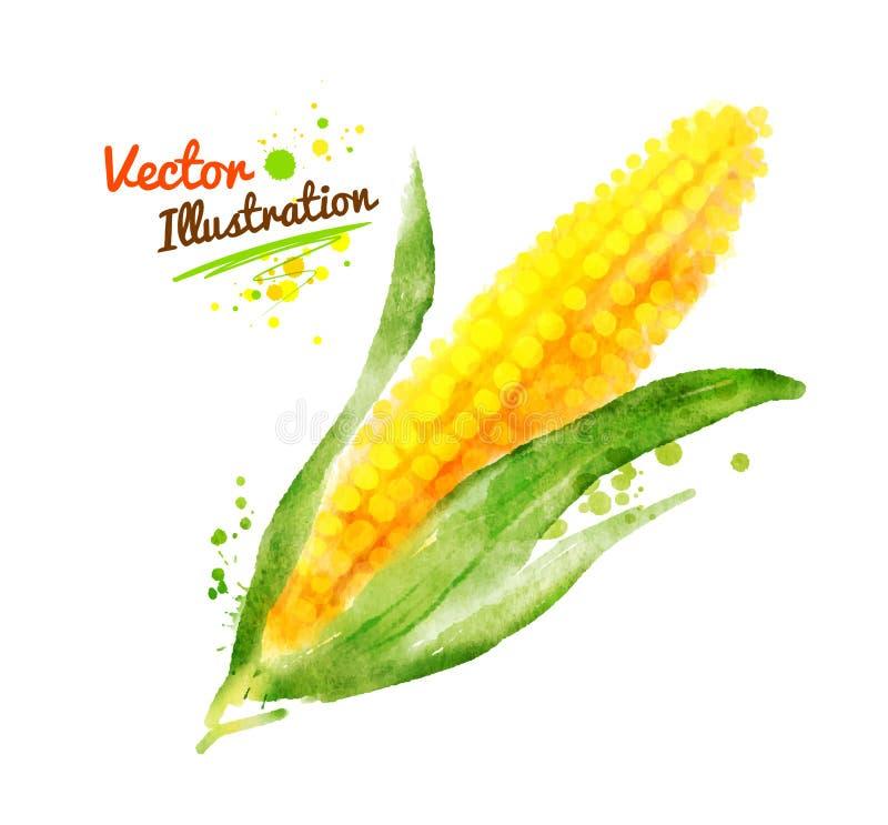 Milho da aquarela ilustração stock