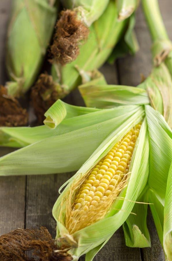 Milho fresco dourado da exploração agrícola na tabela imagem de stock