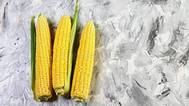Milho fresco em espigas com folhas em um fundo claro, close up, vegetais Configuração lisa Copie o espaço imagem de stock