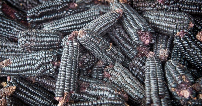 Milho negro em Iquitos Peru fotos de stock