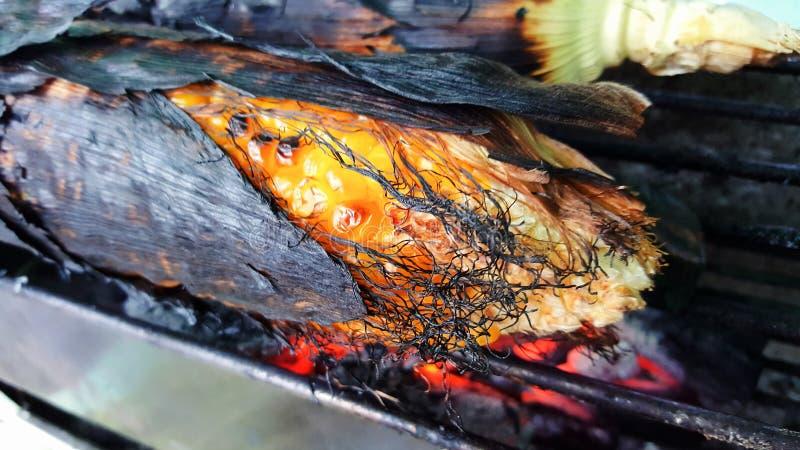 Milho roasted close-up foto de stock royalty free