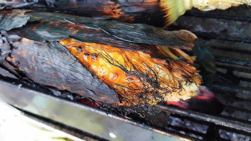 Milho roasted close-up imagem de stock