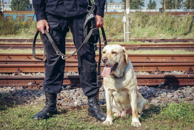 Milicyjny pies w Polska zdjęcia stock