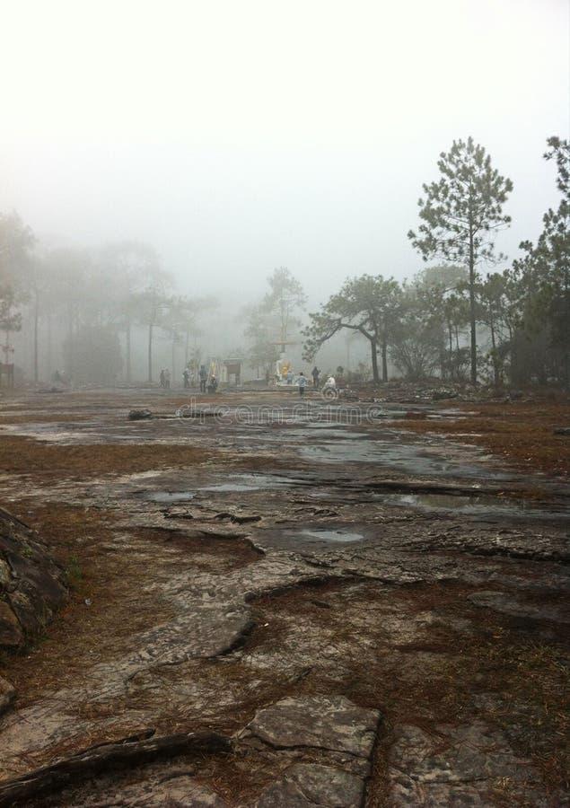 Milieu bij berg royalty-vrije stock foto