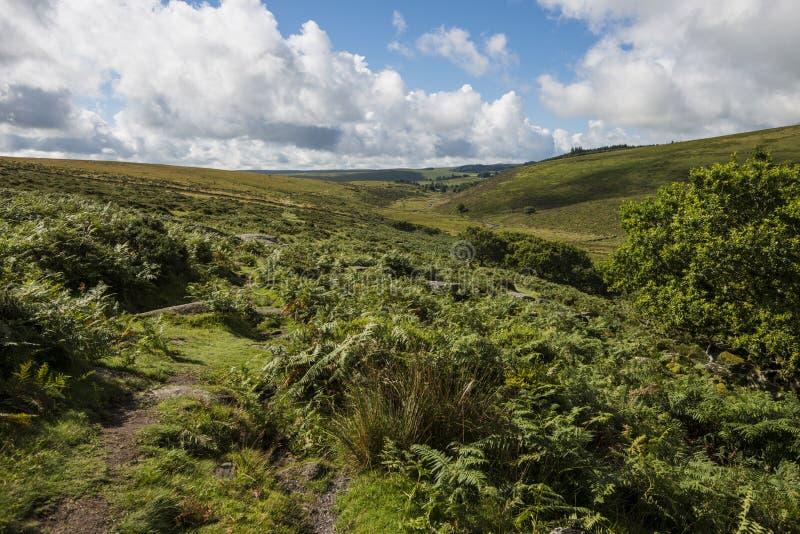 Milieu van het Hout van Wistman ` s - een oud landschap op Dartmoor, Devon, Engeland royalty-vrije stock foto