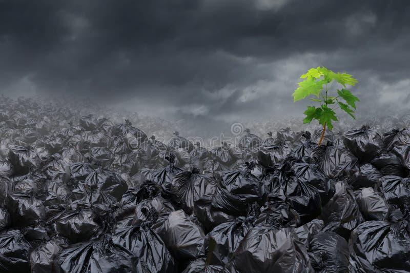 Milieuhoop stock illustratie