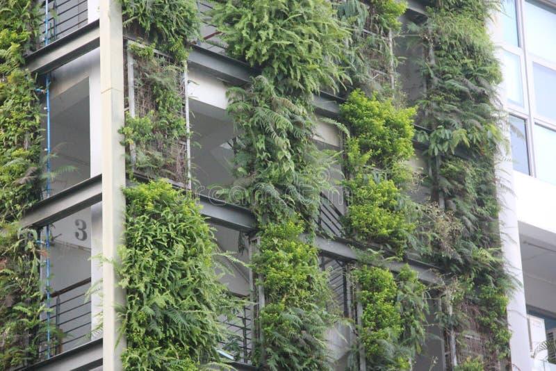 Milieuontwerp van moderne architectuur stock foto