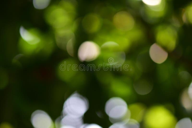 Milieux de Bokeh photographie stock libre de droits