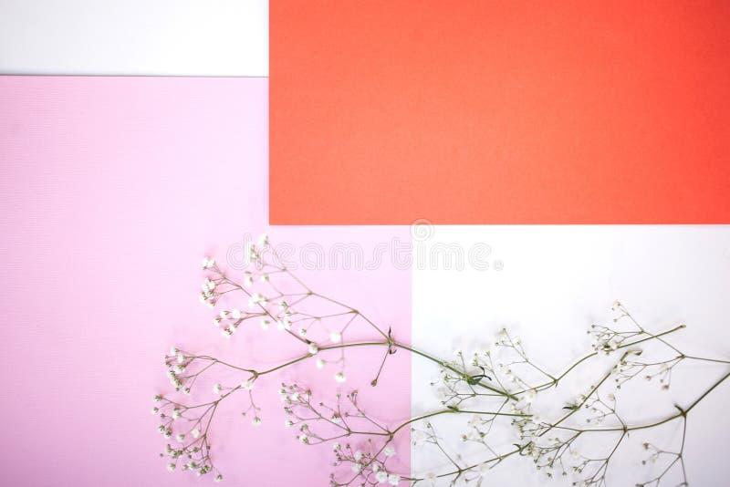 Milieux et disposition Fond géométrique horizontal de Minimalistic dans blanc en pastel, le rose et la nuance de corail avec un g photographie stock