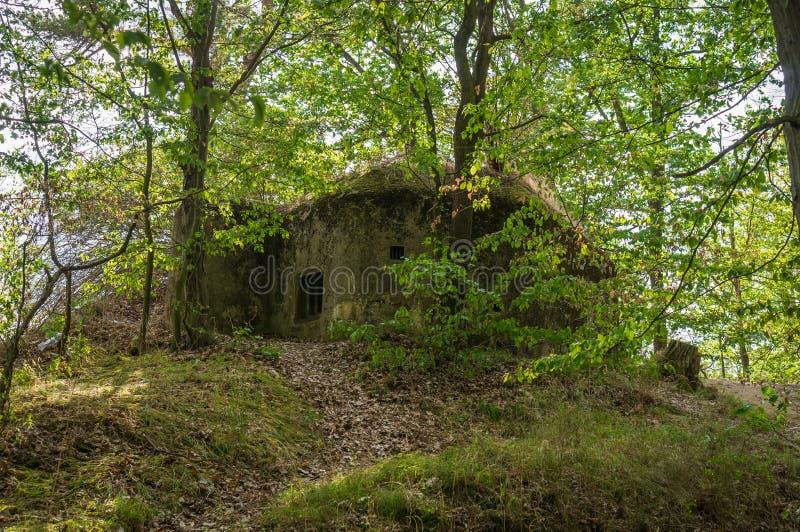 Militär bunker i skog från världskrig II royaltyfri fotografi