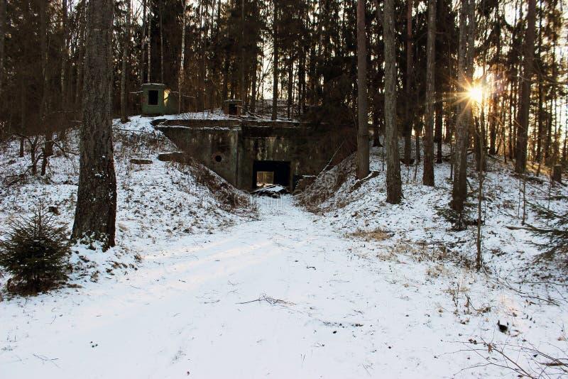 Militär bunker i skogen royaltyfri foto