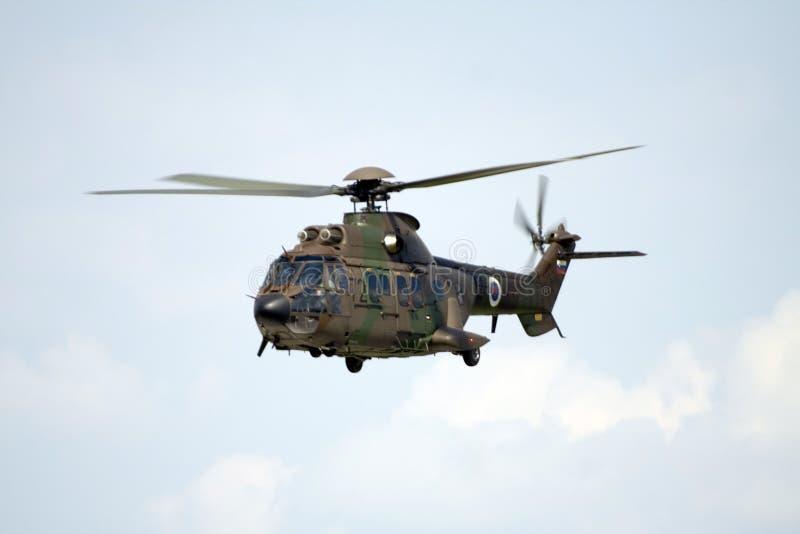 Militärhubschrauber Puma lizenzfreies stockfoto