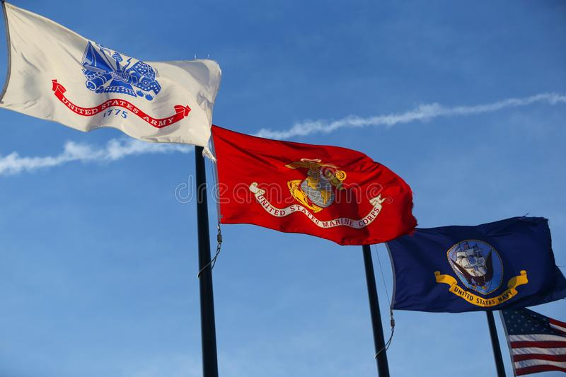 Milit?ra flaggor av F?renta staterna arkivbild