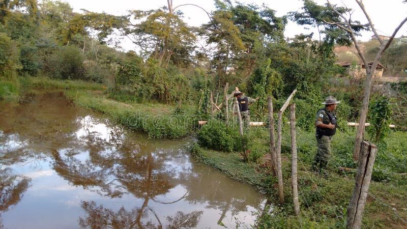 Militaire politie van het Milieu van Minas Gerais Inspecting stock afbeelding