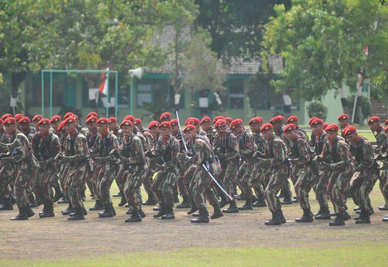 Militari delle forze speciali (Kopassus) dall'Indonesia immagine stock libera da diritti