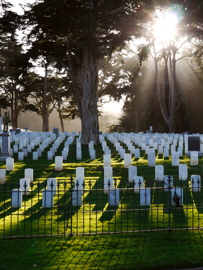 Download Military Cemetery USA stock photo. Image of honour, iron - 7583564