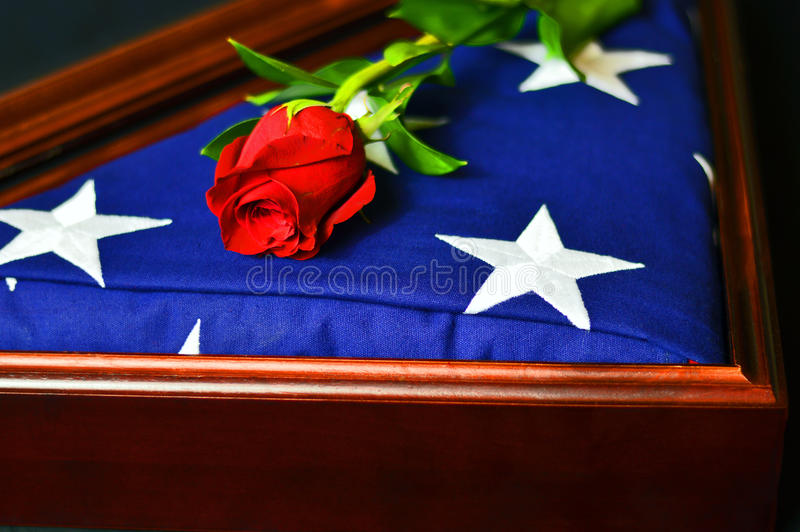 American Flag with Rose stock photography