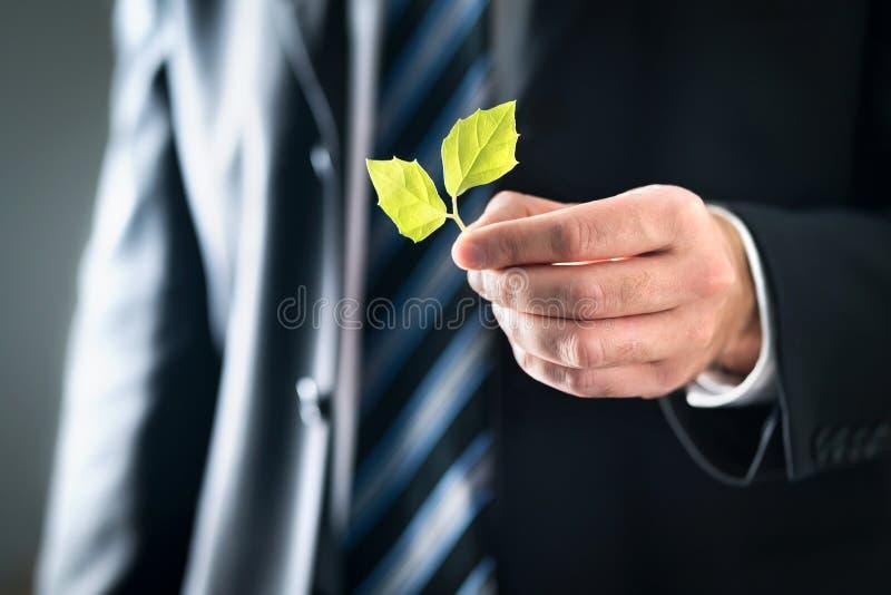 Miljö- advokat eller politiker med vänliga värden för natur och för miljö Affärsman i dräkten som rymmer gröna blad royaltyfri bild