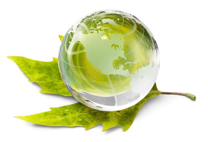Miljöbegreppet, det glass jordklotet och gräsplan spricker ut royaltyfria bilder