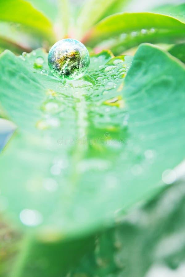 Miljöhögermanbegrepp fotografering för bildbyråer