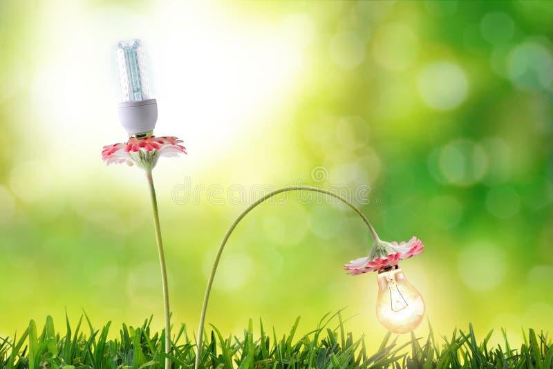 Miljövård för kulor för belysning för energieffektivitet stock illustrationer