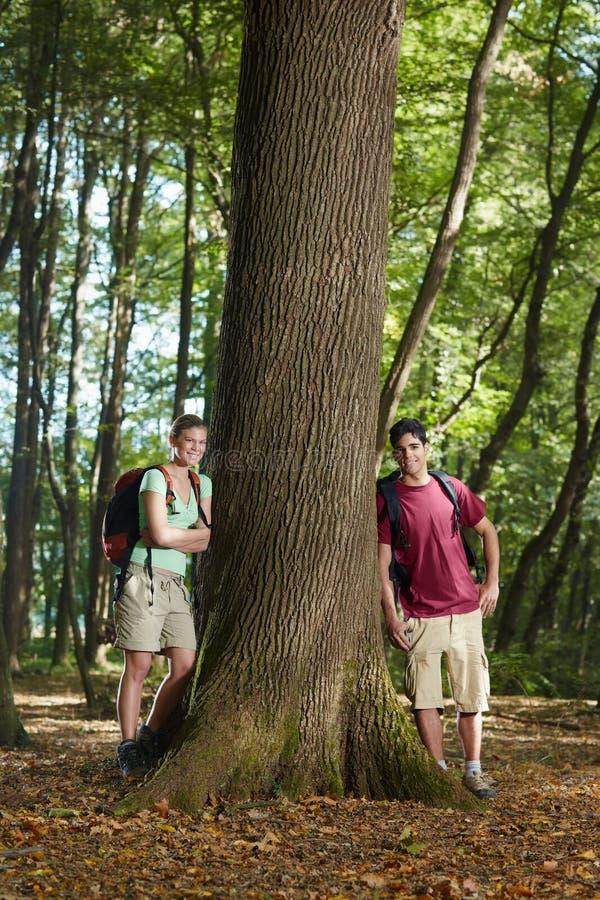 Miljövård: fotvandrare som lutar på tree royaltyfri foto