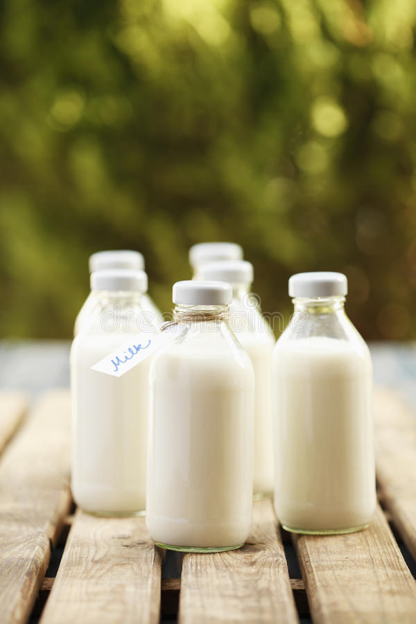 Download Milk Bottle stock photo. Image of refreshment, cold, morning - 26585500