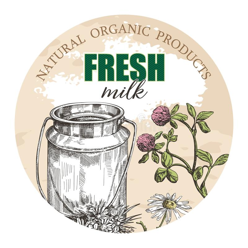 Milk can and wildflowers. Round background for the design of agricultural products. royalty free illustration