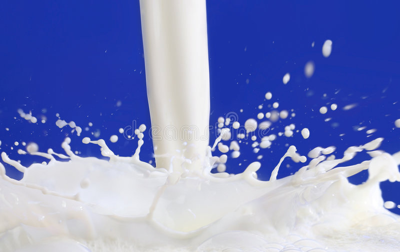 Milk flowing with blue background royalty free stock images