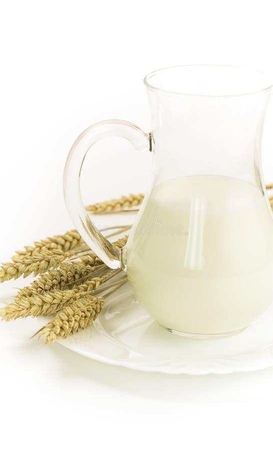 Milk and grain stock photography