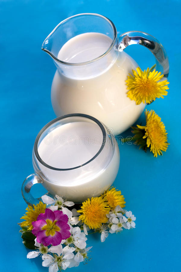 Download Milk jug and glass stock photo. Image of glass, eating - 11706308