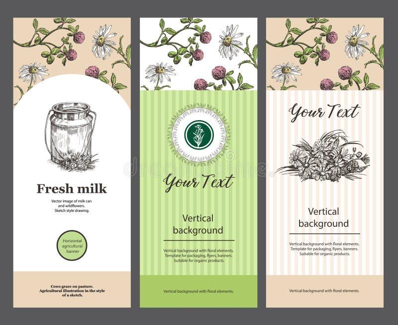 Milk kan och ängblommor Set av vertikala baner Templats för att förpacka, reklamblad, baner Passande för designen vektor illustrationer