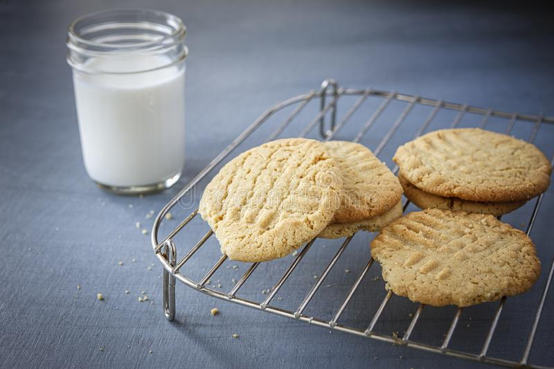Milk and peanut butter cookies. stock photography
