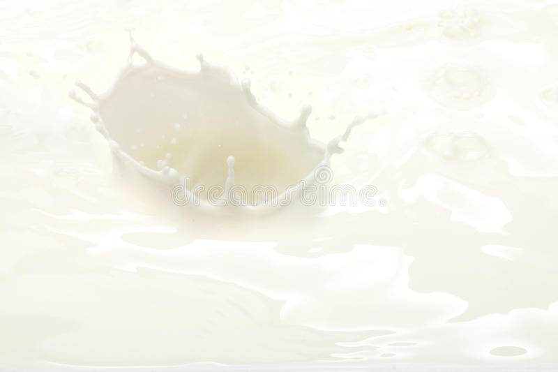 Download Milk splash. stock image. Image of liquid, motion, drops - 22253017